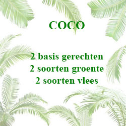 cateringmenu-coco